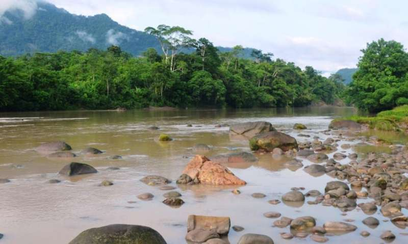 In the Amazon, protected areas often lose out when the search for energy is on