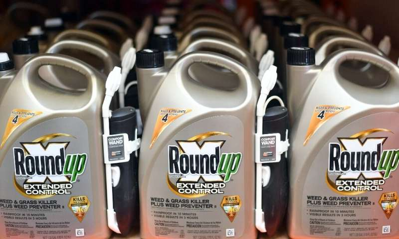 In this file photo taken on July 09, 2018 Roundup products are seen for sale at a hardware store in San Rafael, California