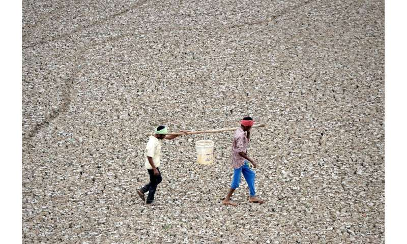 In this photo taken on June 20, 2019, Indian worker carry the last bit of water from a small pond in the dried-out Puzhal reserv