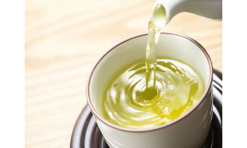 Is green tea a fad or a real health boost?
