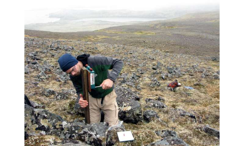 Island 'soundscapes' show potential for evaluating recovery of nesting seabirds