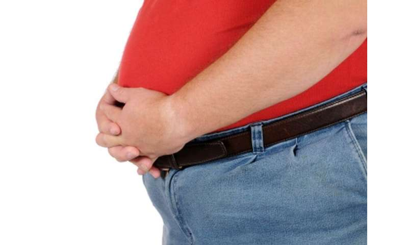 Is your state one of the 'Most obese' in america?