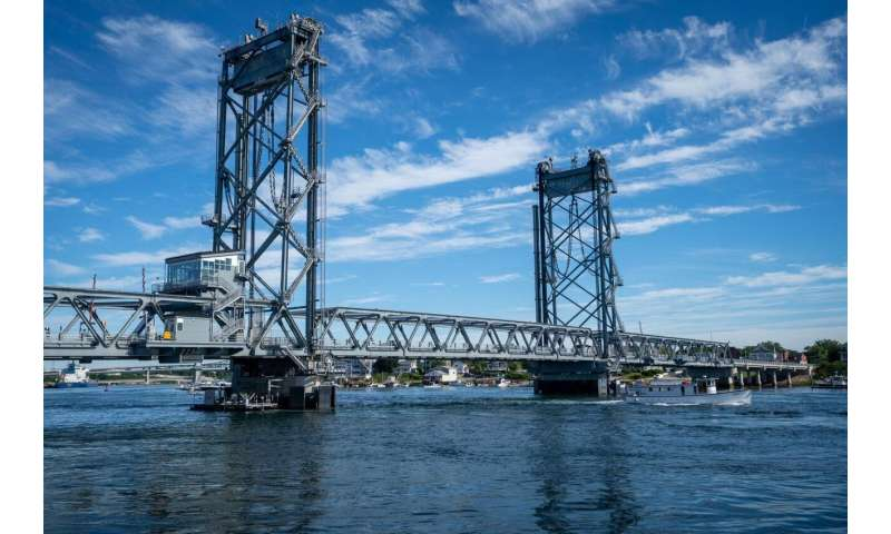 It's alive! UNH researchers create innovative 'living' bridge