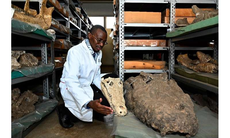 """Kenyan paleontologist Job Kibii says there are """"tonnes and tonnes of specimens... that haven't been analysed"""""""