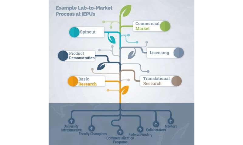 Lab-to-market study explores success