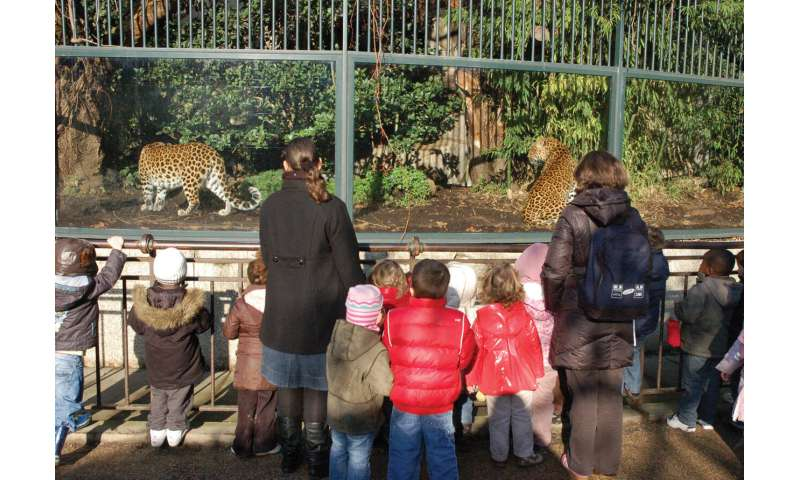 Large carnivores and zoos -- essential for biodiversity conservation marketing