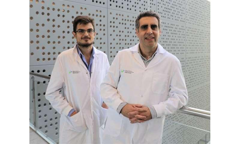 Leukaemia cells can transform into non-cancerous cells through epigenetic changes