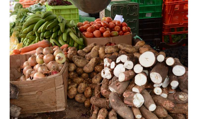Limiting warming to 2 degrees C will require emission cuts across entire food system