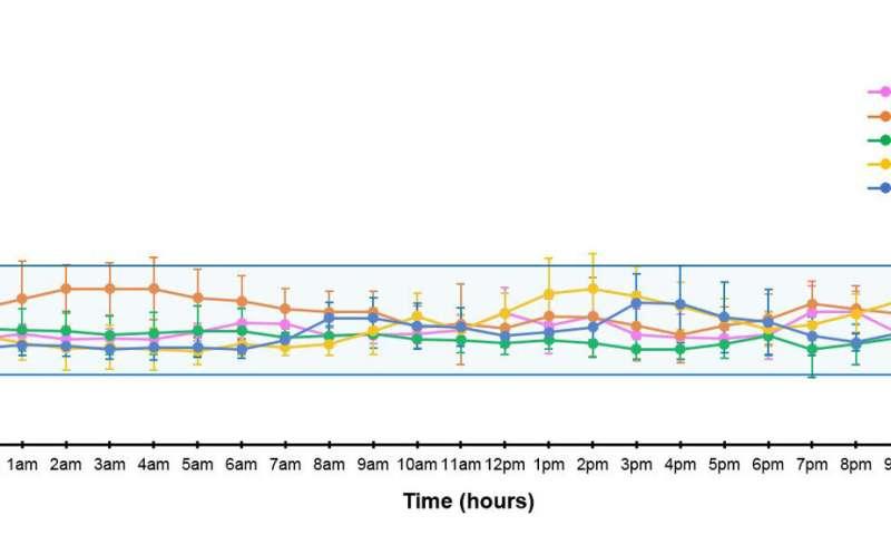 Long-term islet transplant recipients show near-normal glucose control