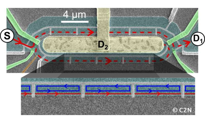 Macroscopic electron quantum coherence in a solid-state circuit