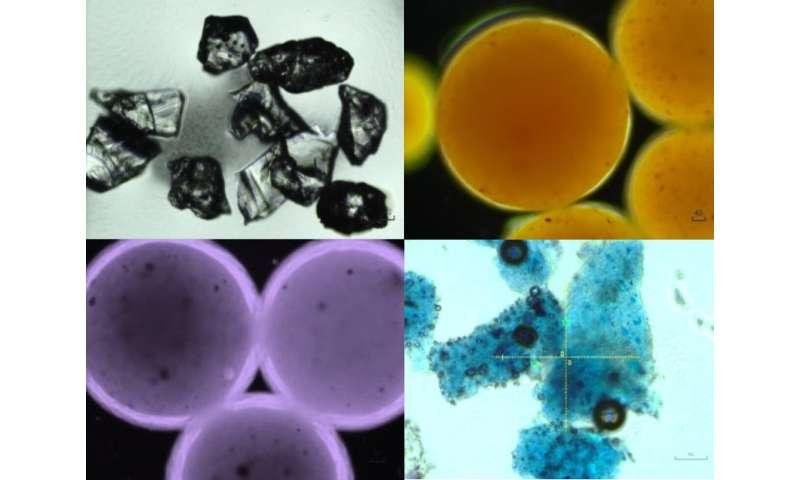 Magnetic 'springs' break down marine microplastic pollution