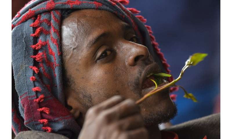 Many in Ethiopia see khat chewing as a cultural activity rather than a societal problem
