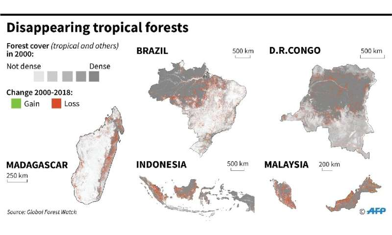 Map showing forest cover since 2000, in the five most affected countries