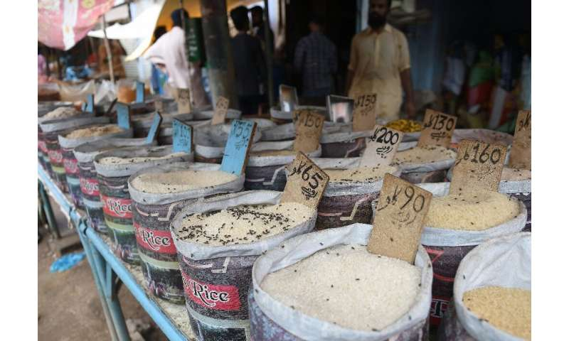 Markets in Karachi have been overwhelmed by flies, after heavy rains inundated the city