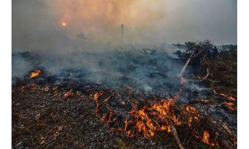 Massive jungle areas in Sumatra and Borneo island are ablaze