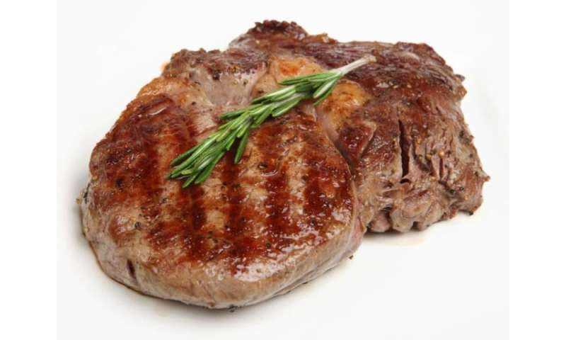Meat study authors have financial ties to beef industry