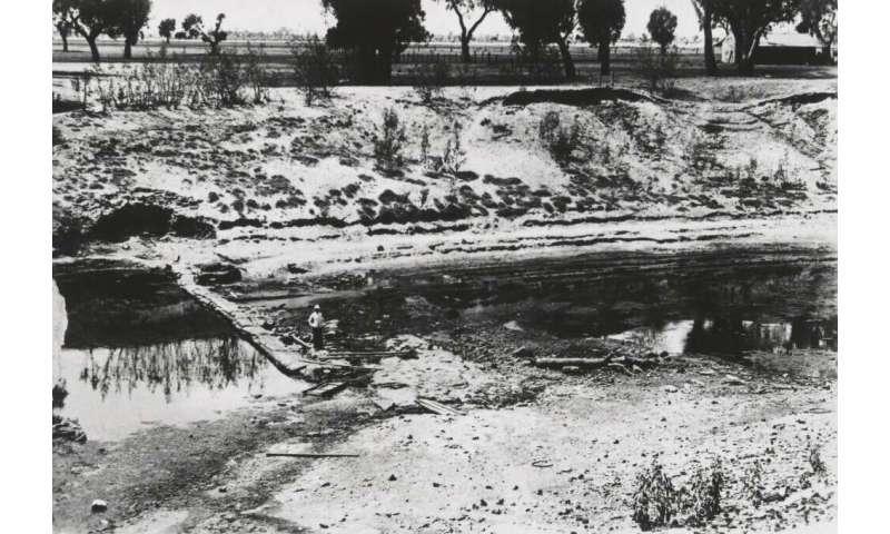 Megadrought caused mega biodiversity loss