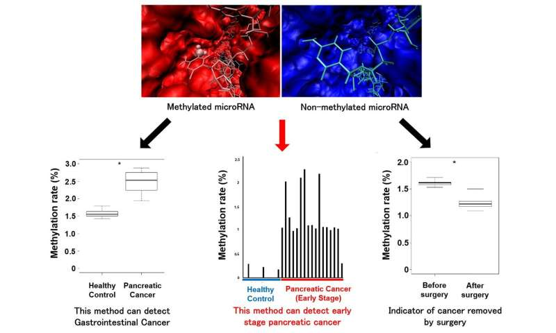 Methylation of microRNA may be a new powerful biomarker for cancer