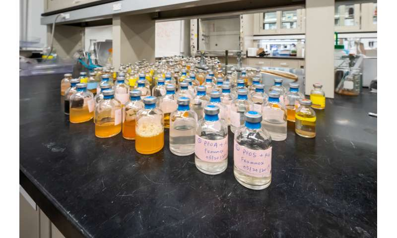 Microbe chews through PFAS and other tough contaminants