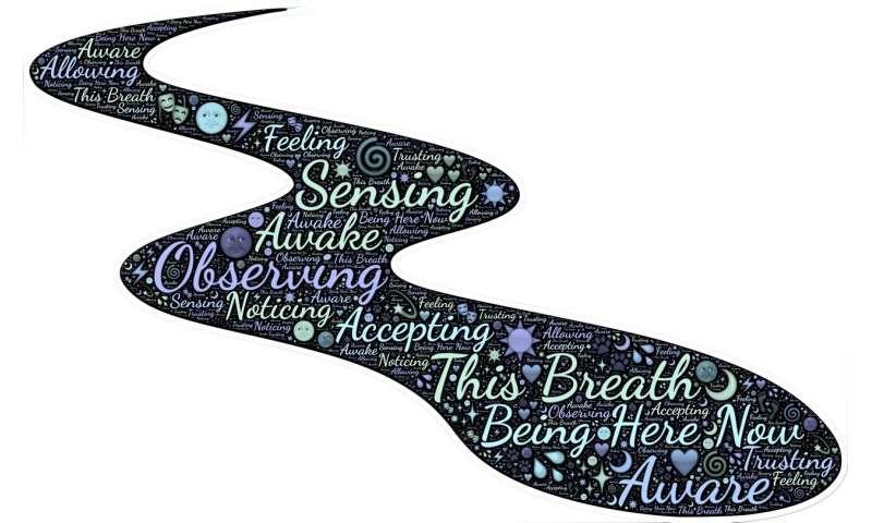 mindful awareness