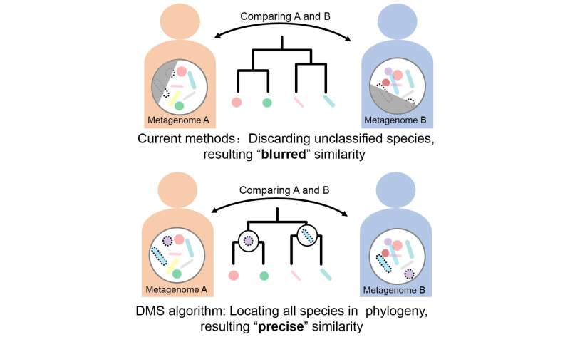 Mining metagenomics: A faster and more efficient method to compare metagenomes