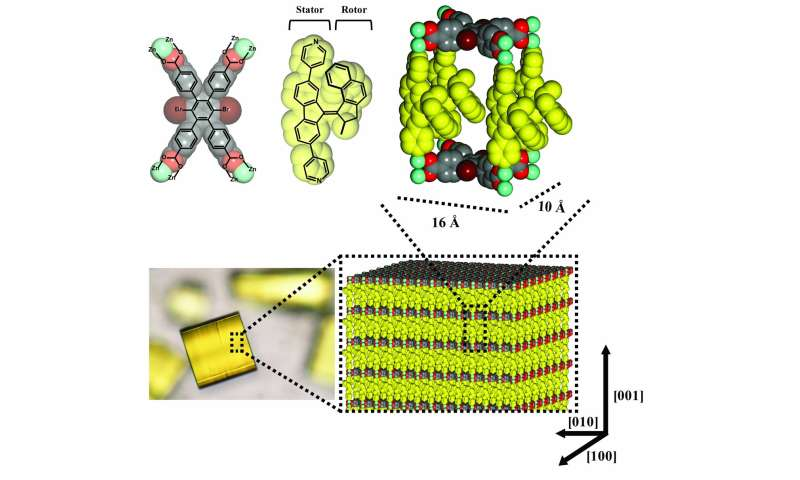 Molecular motors run in unison in a metal-organic framework