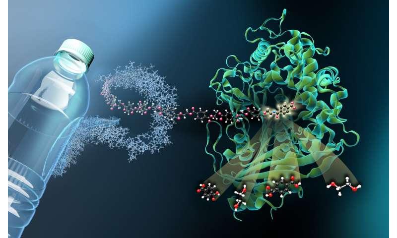 'Molecular scissors' for plastic waste