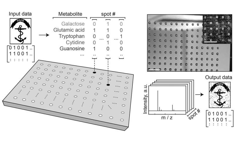 Molecular thumb drives: Researchers store digital images in metabolite molecules