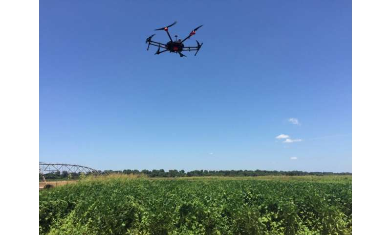 More advanced remote-sensing technology needed for weed detection, management