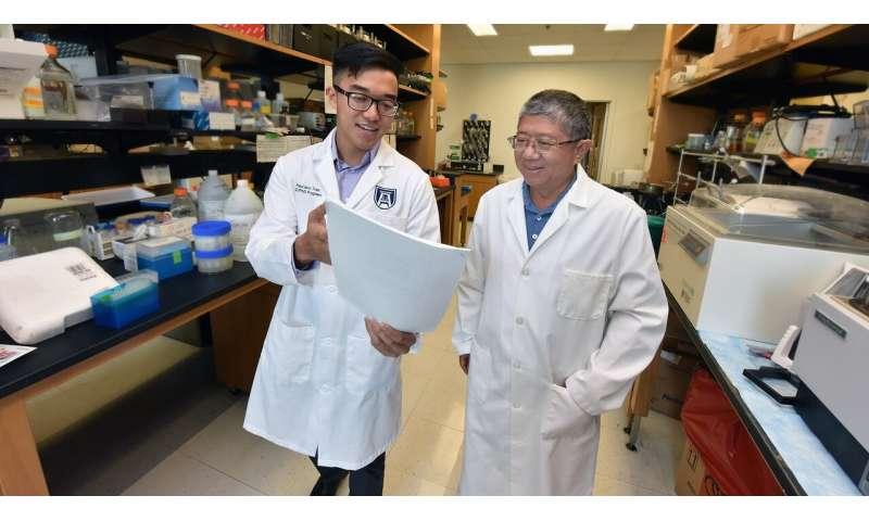 More predictive genetic risk score sought for type 1 diabetes