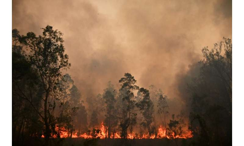 More than 100 fires were still burning across New South Wales and Queensland on Sunday, including dozens of blazes that remained