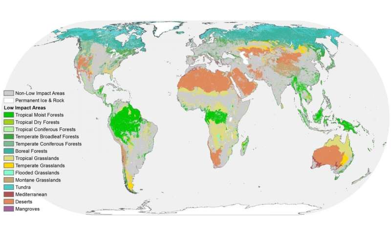 Much of the Earth is still wild, but threatened by fragmentation