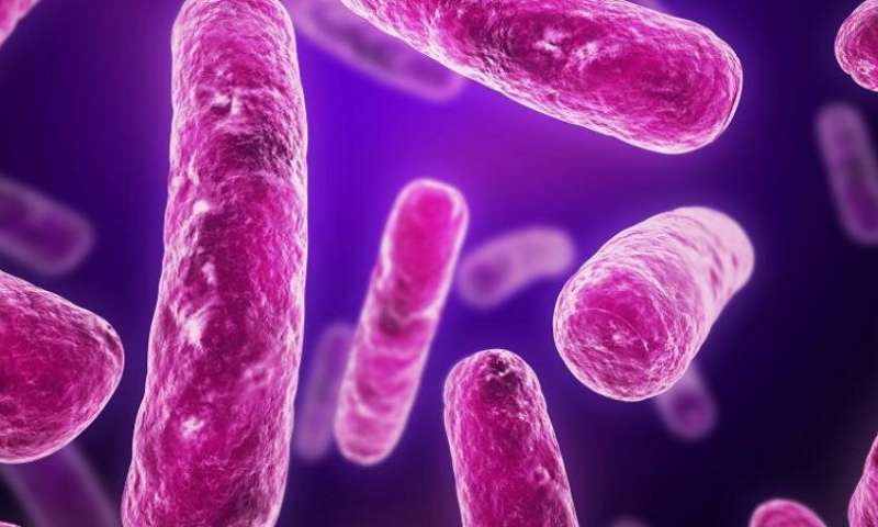 Multi-drug resistant UTIs—is the answer in our food?