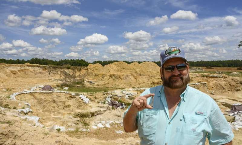 Museum volunteers discover new species of extinct heron at North Florida fossil site