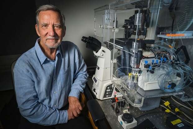 Mystery novel and dream spur key scientific insight into heart defect