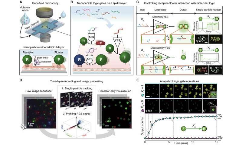 **Nano-bio-computing lipid nanotablet