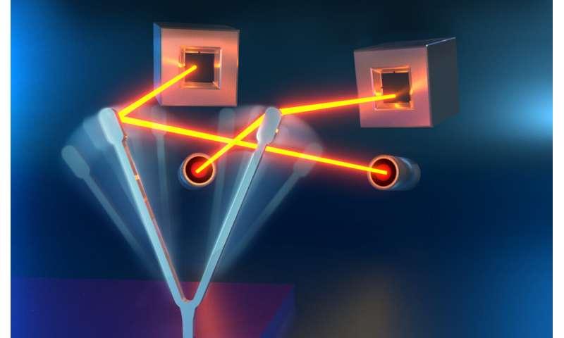 Nanoscience—Insect-inspired motion sensing