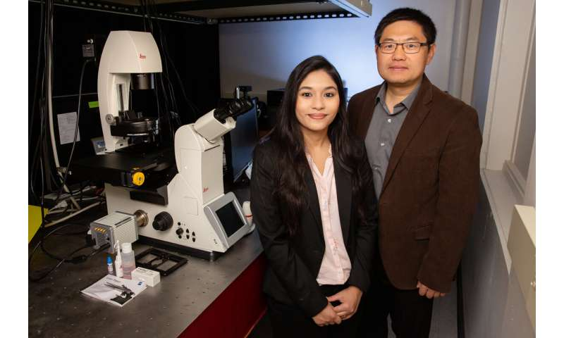 New approach uses light to stabilize proteins for study