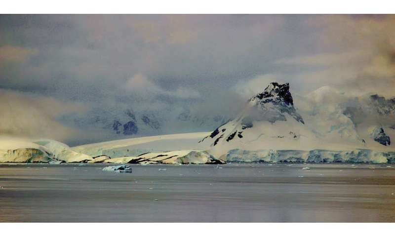 New data on underwater volcanoes in Bransfield Strait, Antarctica
