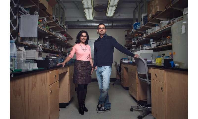New electron microscopy technique limits membrane destruction