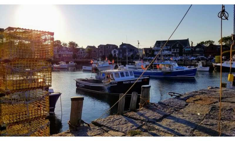 New England fishermen losing jobs due to climate: study