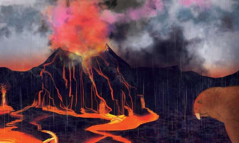 New evidence suggests volcanoes caused biggest mass extinction ever