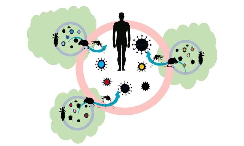 Bệnh truyền nhiễm là gì và những căn bệnh phổ biến cần lưu ý