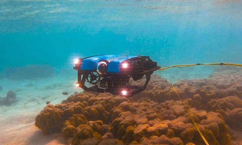 New monitoring technque lets your remotely operated vehicle do the snorkelling