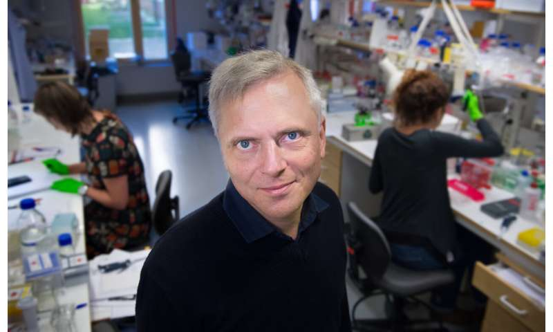 New pain organ discovered in the skin
