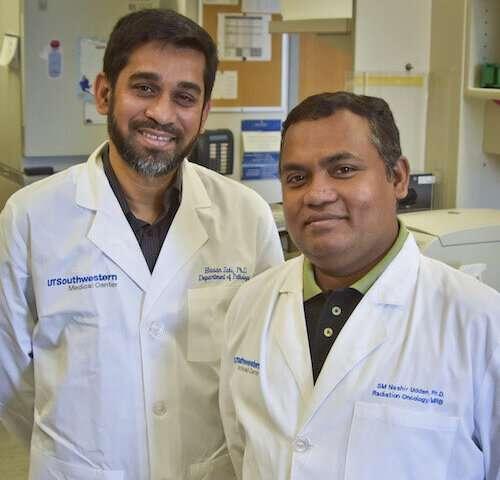 New role for innate immune sensor: Suppressing liver cancer