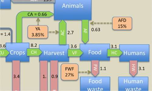 Not all meat is created equal: How diet changes can sustain world's food production