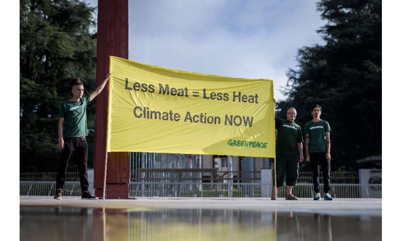 Can we eat Big Macs and still avoid climate chaos?