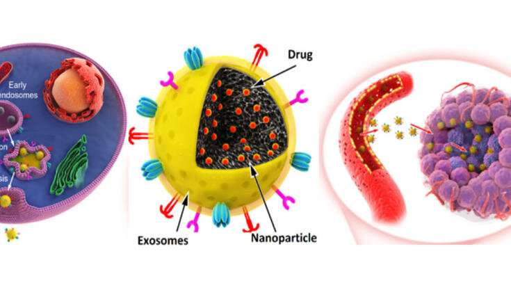 Novel anti-cancer nanomedicine for efficient chemotherapy