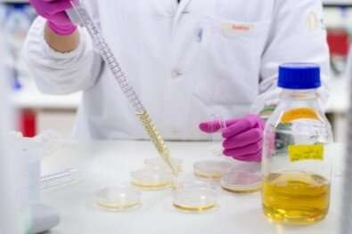 Novel compound interrupts malaria parasite's lifecycle